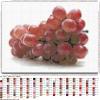 Виноград схема