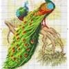 Схема вышивки павлинов