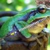 Как сделать царевну-лягушку из бисера