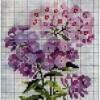 Схема вышивки «Садовые цветы»