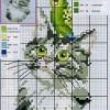 Схема вышивки «Кот с попугаем»