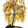 Дерево акации из бисера