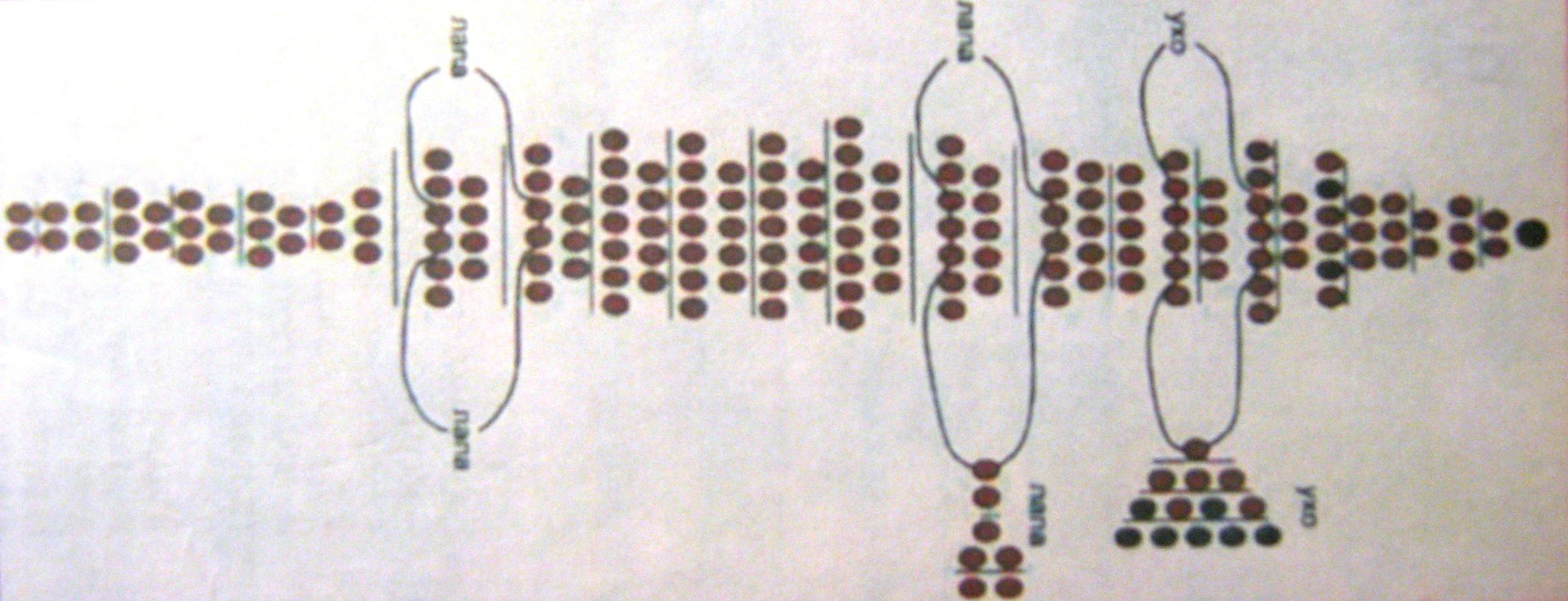 плетение из бисера дельфина схема для начинающих