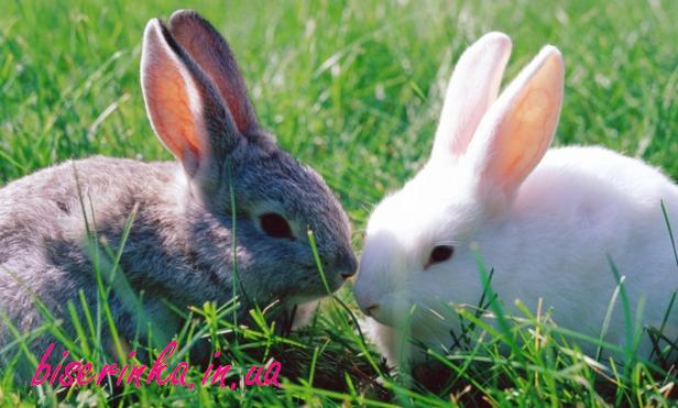 сделать кроликов из бисера
