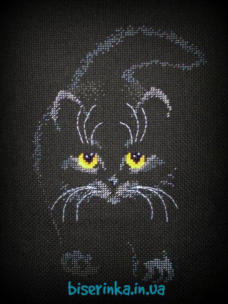 Вышивка кошки на чёрной канве